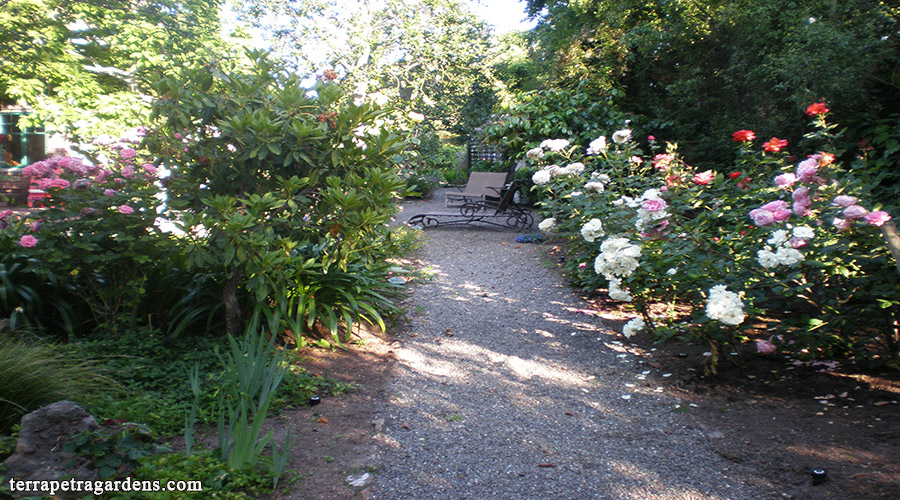 garden_112