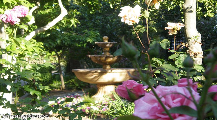 garden_115