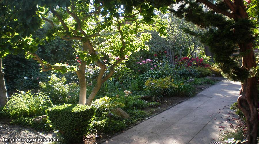 garden_117