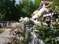 garden_101