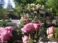 garden_102