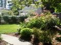 garden_104