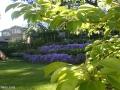 garden_122